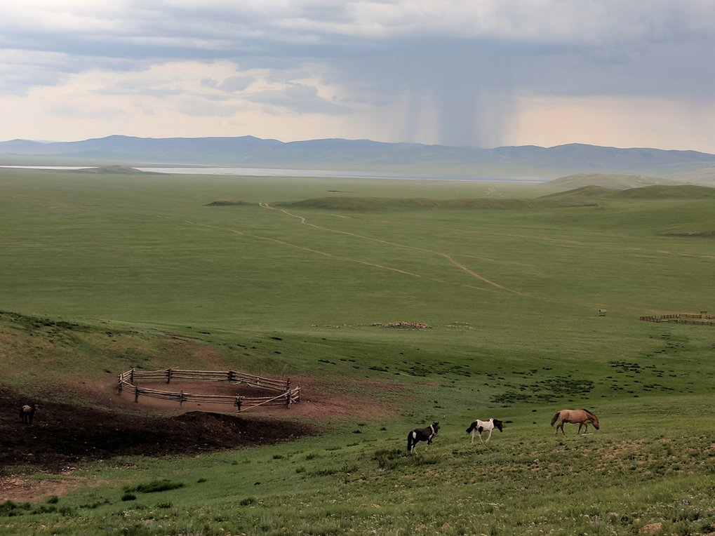 Horses graze at Erkhel Lake in northern Mongolia, overlooking a large Bronze Age archaeological complex.