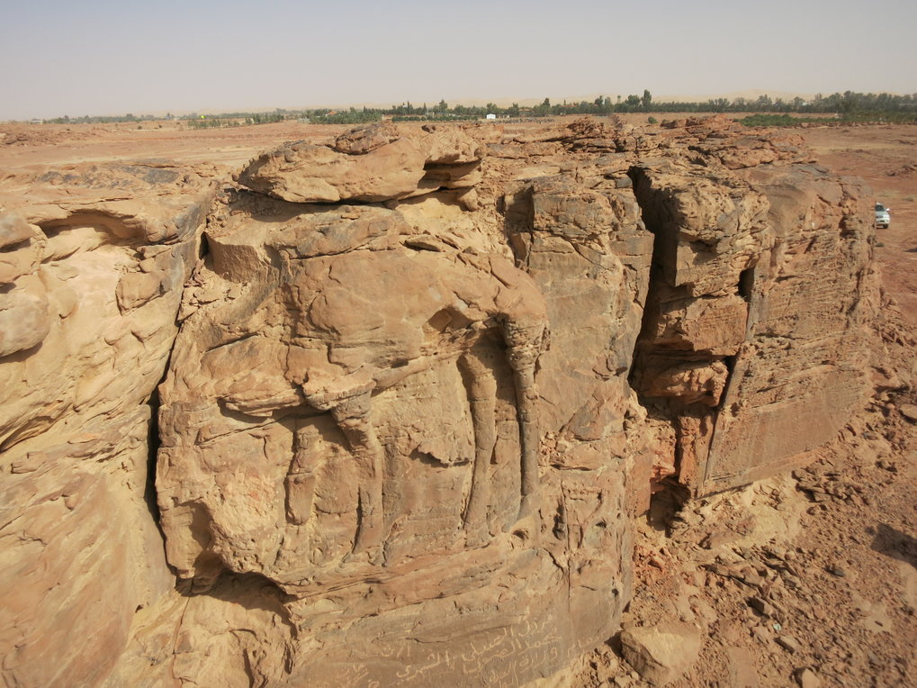 "Das Projekt ""Dating and Conservation of ancient camel sculptures in northern Saudi Arabia"" wird etwa ein Jahr dauern."