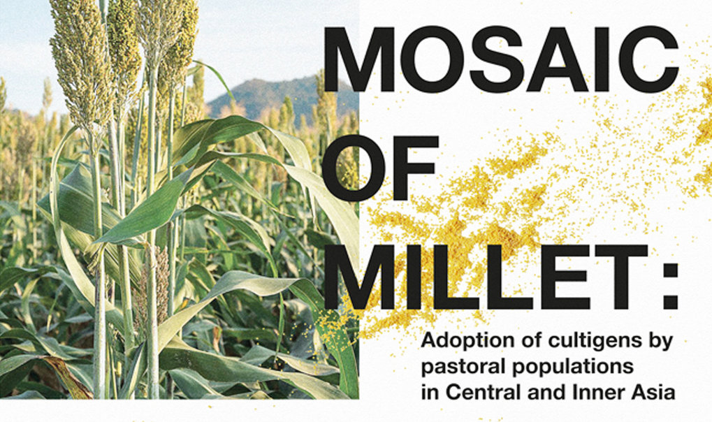 DA Workshop: Mosaic of Millet: Adoption of cultigens by pastoral populations in Central and Inner Asia