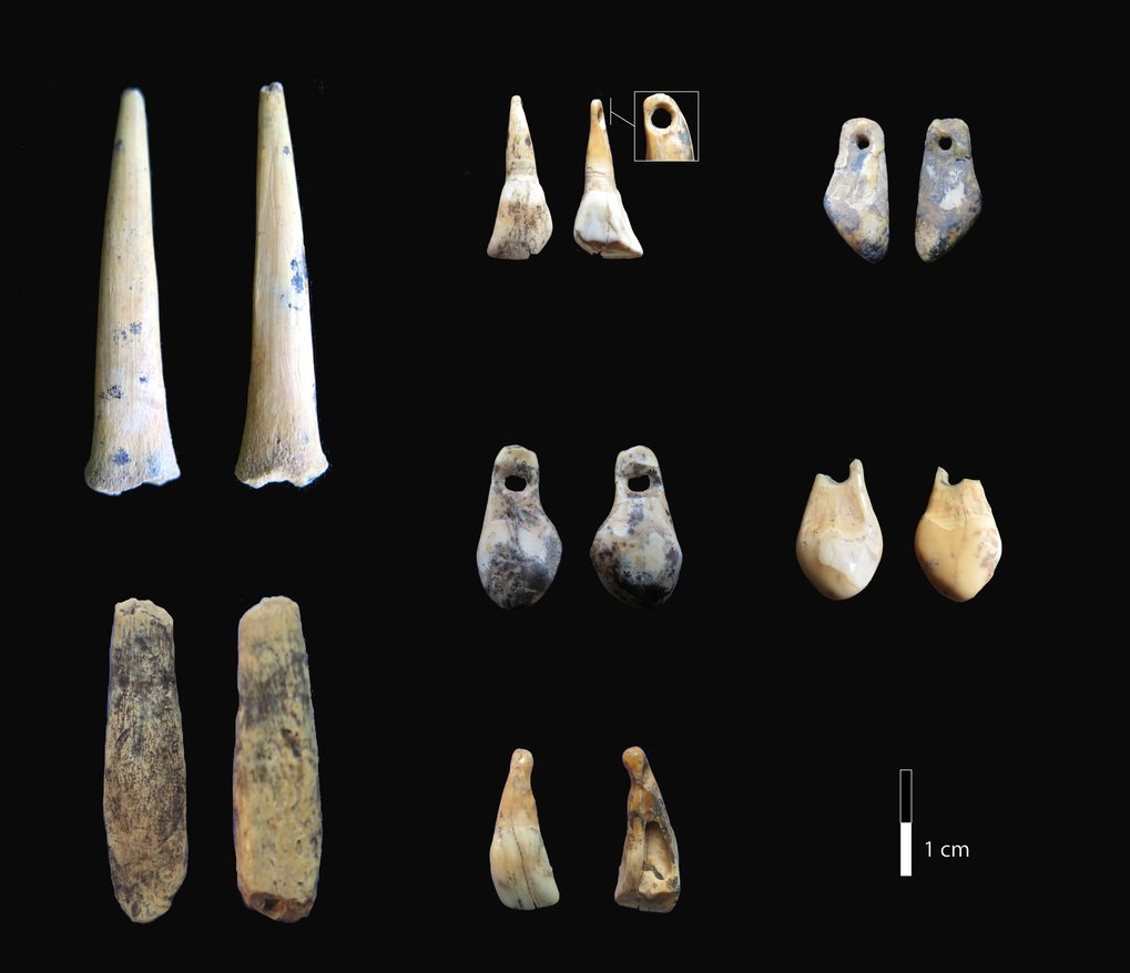 Bone points and pierced teeth from the early Upper Paleolithic layers of Denisova Cave sampled for radiocarbon dating.