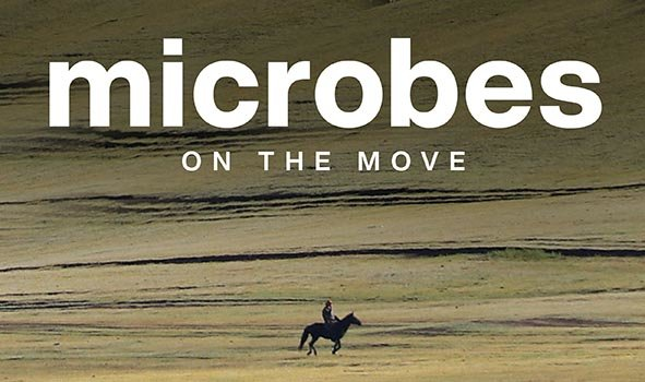 Microbes on the Move