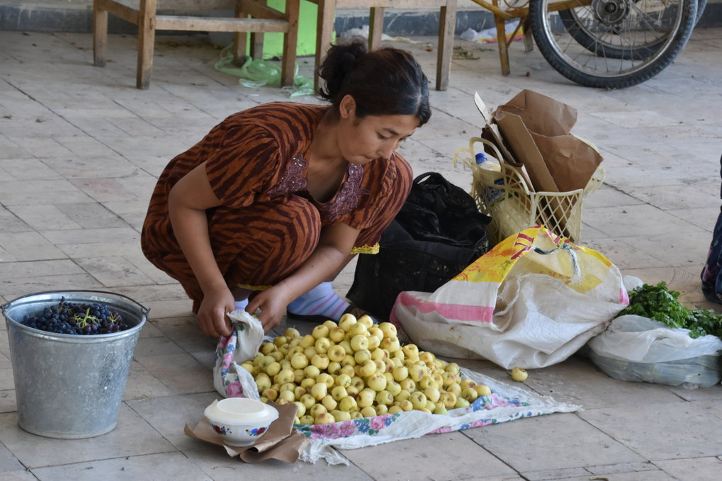 Venders in every Central Asian bazaar sell a diverse array of apples. This woman in the Bukhara bazaar is selling a variety of small sweet yellow apples, which she locally cultivated in Uzbekistan. Some of the fruits sold in these markets today travel great distances, similar to how they would have during the peak of the Silk Road.