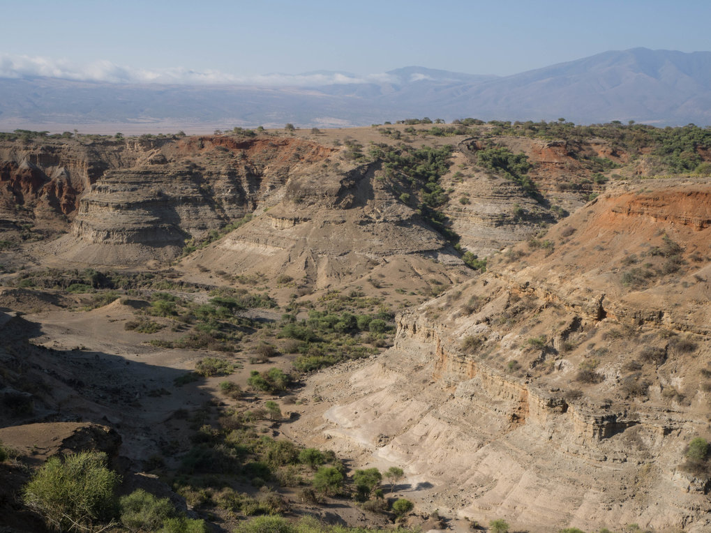 An impressive view of the geological stratigraphy encompassing the last two million years in the Oldupai Gorge, Tanzania.