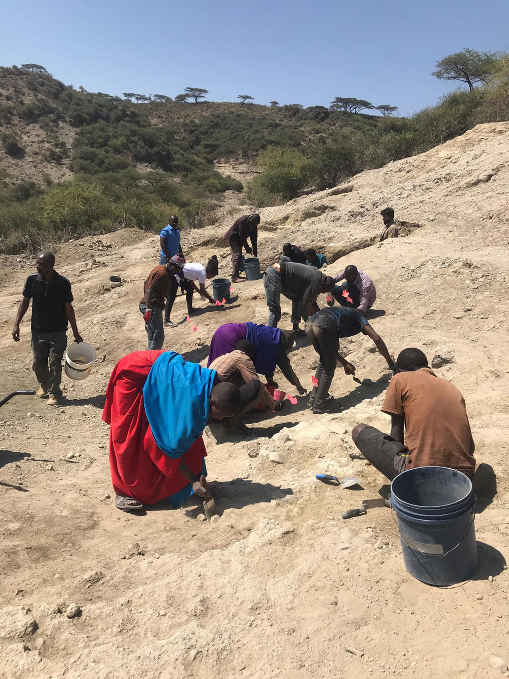 Excavations during the summer 2019 in the Western Oldupai Gorge, where many stone tools and faunal remains were recovered.