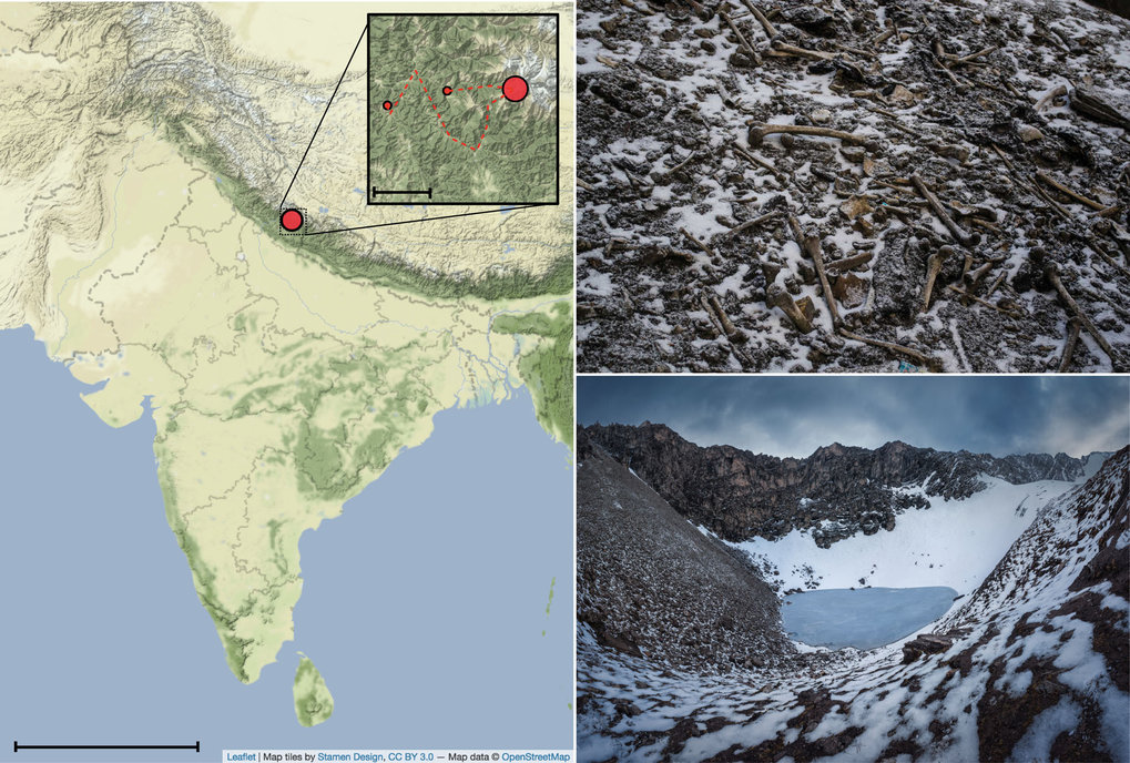 Context of Roopkund Lake. a) Map showing the location of Roopkund Lake. The approximate route of the Nanda Devi Raj Jat pilgrimage relative toRoopkund Lake is shown in the inset. b) Image of disarticulated skeletal elements scattered around the Roopkund Lake site. Photo by Himadri Sinha Roy.c) Image of Roopkund Lake and surrounding mountains. Photo by Atish Waghwase