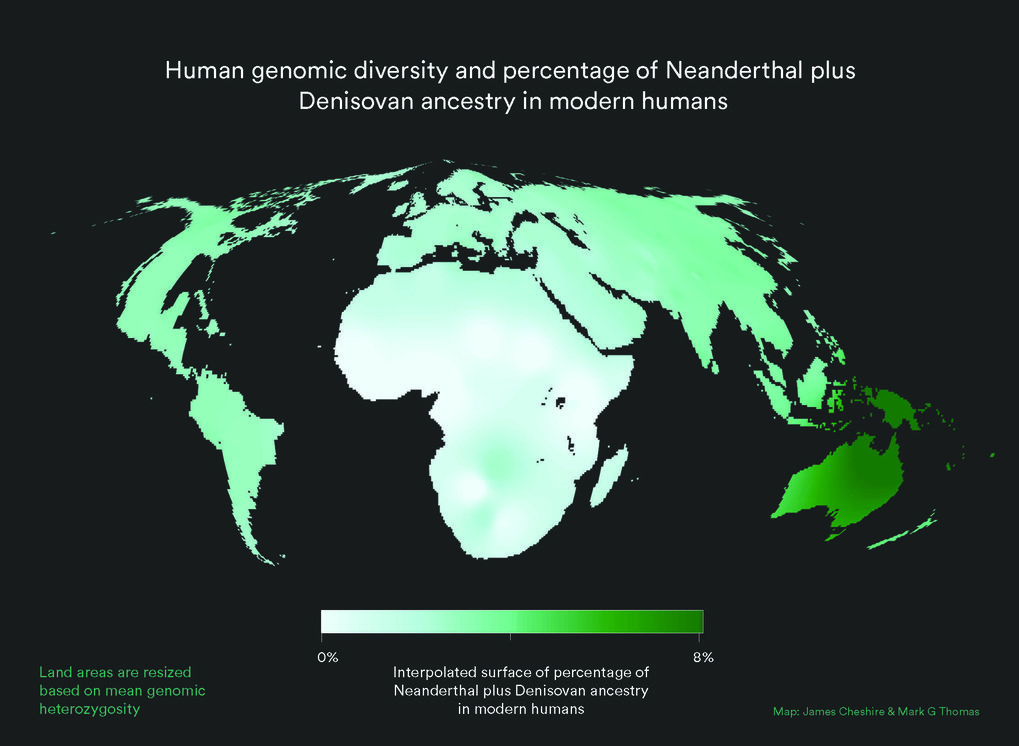 World map with land area resized to represent modern human genetic diversity and colour representing Neanderthal plus Denisovan ancestry. As can be seen, contributions from other populations to the Homo sapiens gene pool are small and unevenly distributed. Africa is disproportionately large because the great human genetic diversity - and hence the roots of humanity - are found here.