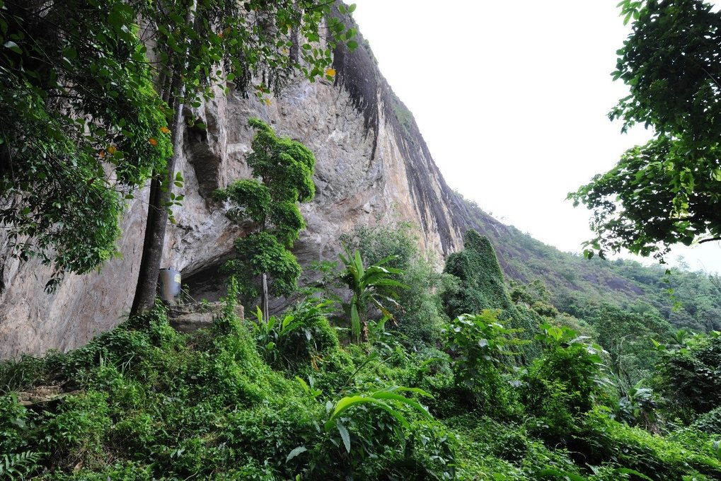 Fa Hien Cave overlooking rainforest