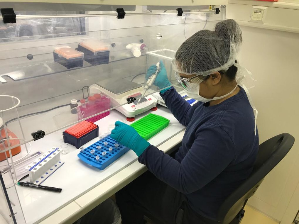 Ayushi Nayak extracting ancient proteins from samples under clean-room conditions in the Proteomics Laboratory at the Department of Archaeology.