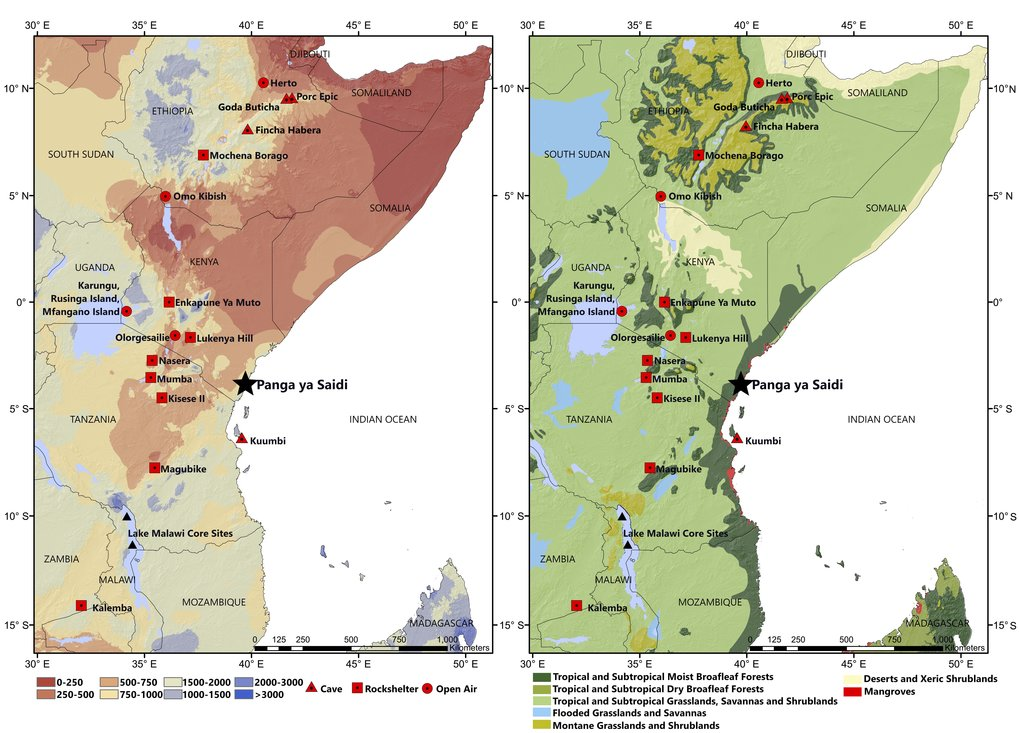 Location of Panga Ya Saidi in relation to precipitation and vegetation boundaries, and other important Middle-Late Pleistocene sites, in eastern Africa.