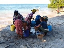 Flotation to recover plants on Pemba island, Tanzania