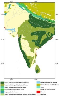 "Modern ecological map of South Asia (following Olson <em>et al.</em>, <span class=""link__reference js-link__reference"">2001</span>)."