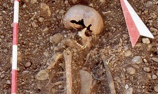 The plague-causing bacterium Yersinia pestis may have first come to Europe with the large-scale migration of steppe nomads in the Stone Age, millennia before the first known historical epidemics.