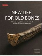 Sciencemag.org, 24 July 2015 - A feature article in Science on ancient DNA highlights Johannes Krause's work.