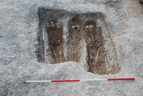 Excavation of the St. Mary Magdalen leprosarium in Winchester, in situ skeletons.