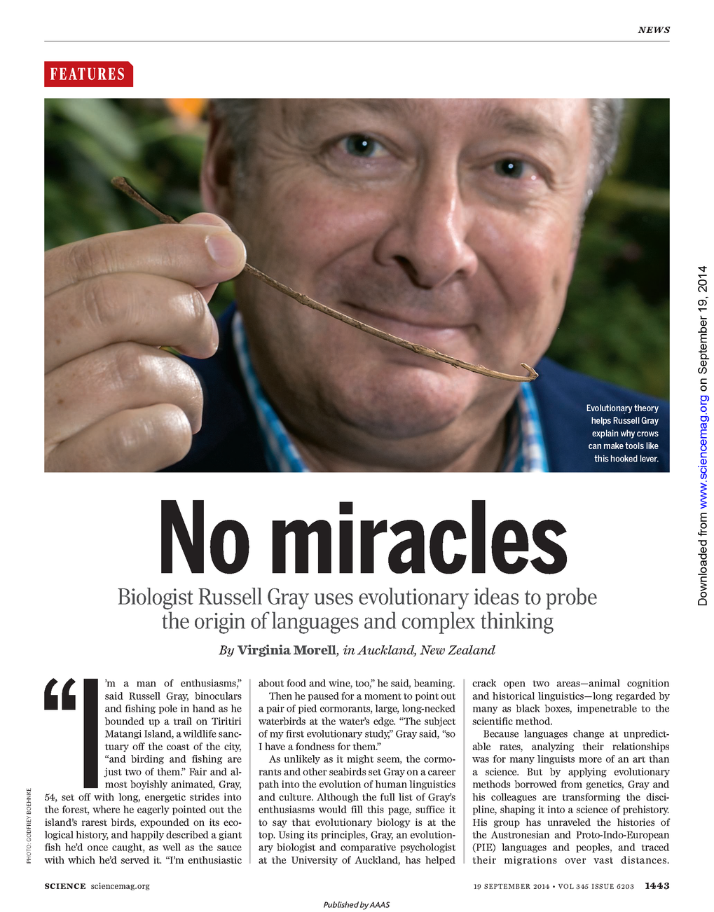 """No miracles"": This is the headline to Virginia Morell's portrait of Russell Gray, Director of the Department of Lingusitic and Cultural Evolution, in Science (September, 19th)."