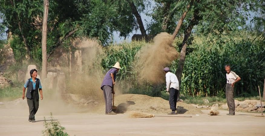 Farmers from near Hohhot, Inner Mongolia, China, winnowing crops after the harvest; photo taken by Spengler in 2010.