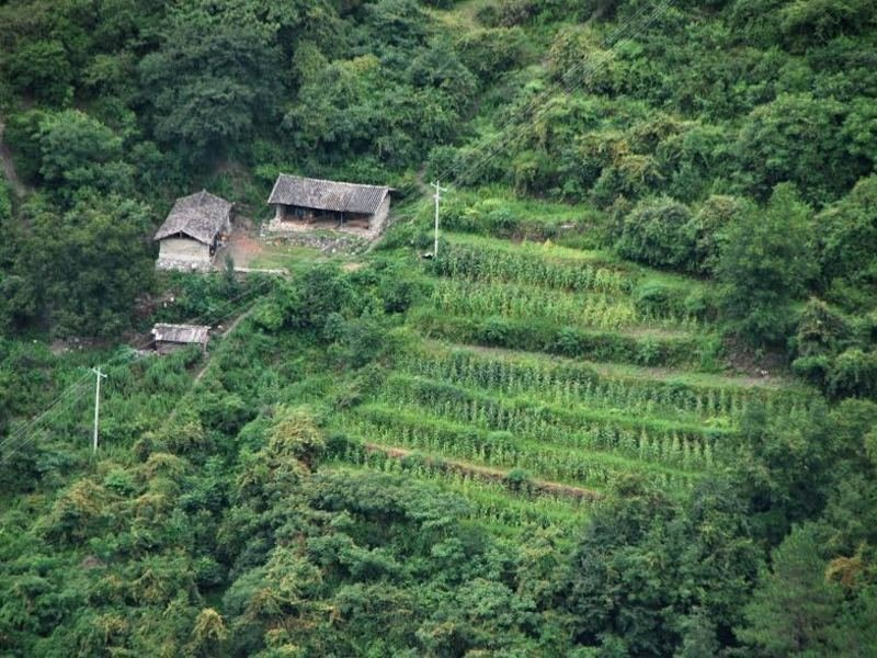 Traditional Naxi farm in a clearing in the bamboo thickets in the mountains of northern Yunnan, China, photo taken by Spengler in 2011.