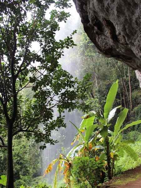 Earliest evidence for human rainforest resource reliance – 36,000 years ago in Sri Lanka