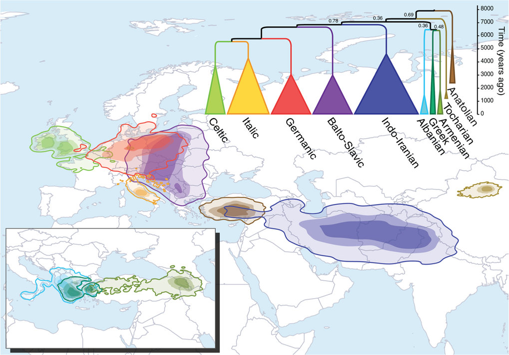The origin of the Indo-European coincides with the Anatolian hypothesis according to quantitative lexical reconstructions