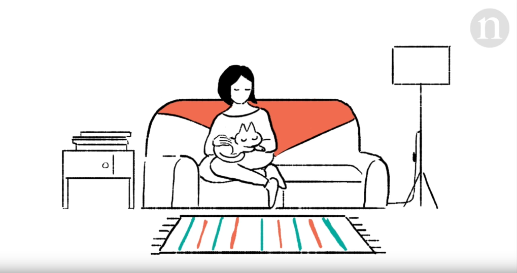 "Video summary of the study by Nature Ecology & Evolution - ""Cat domestication: From farms to sofas."""