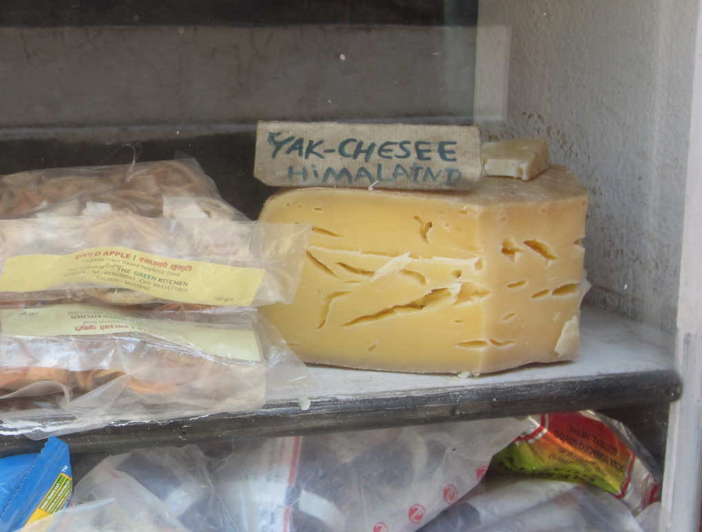 In the Himalayas, yak cheese is a popular high altitude treat.