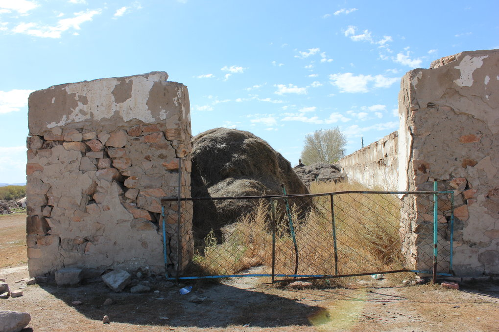 Fodder being stored in a former structure in central Kazakhstan (100 km southwest of Karganda).