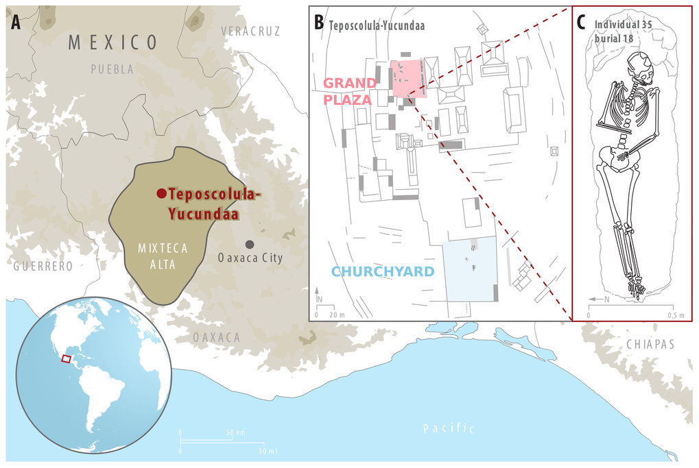 Overview of Teposcolula-Yucundaa, showing its location in the Mixteca Alta region of Oaxaca, Mexico (A), and its central administrative area (B), where excavations took place. (C) shows a drawing of individual 35, from which an S. enterica genome was isolated.