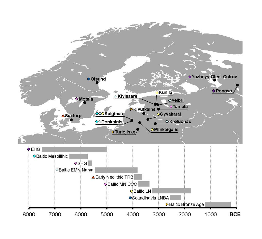 Map showing locations and timeline of the samples introduced in this study.