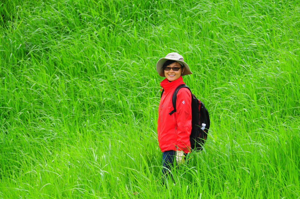 Dr. Shixia Yang in the field.