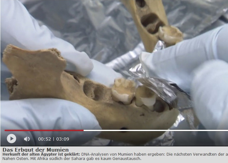 Das Erbgut der Mumien - First genome data of  ancient Egyptians.3sat, nano, broadcast from June 14, 2017 (in German)