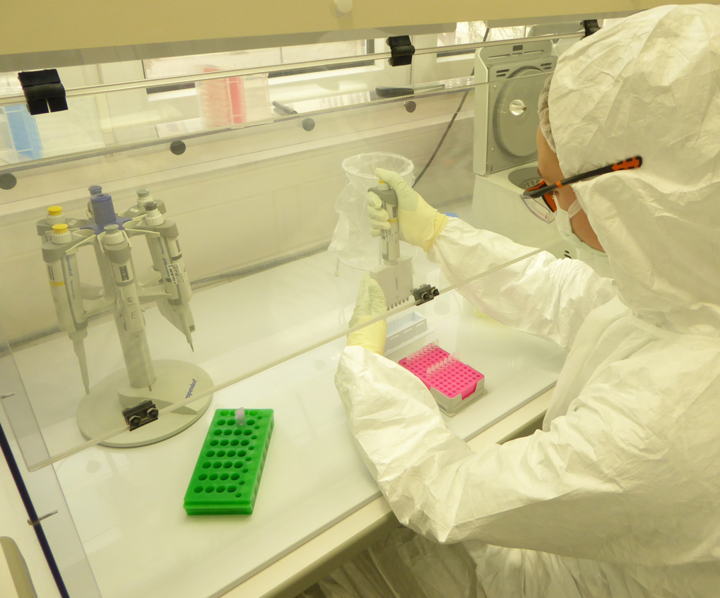 Ancient DNA retrieval in the clean room