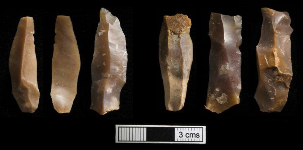 Characteristic Iberomaurusian microlithic tools from from <em>Grotte des Pigeons</em>