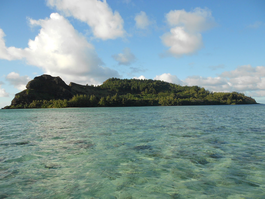 Pacific rats trace 2000 years of human impact on island ecosystems