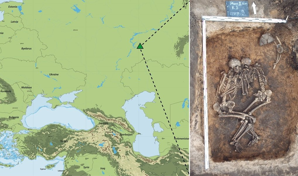 A pair of 3,800-year-old skeletons buried together in Russia test positive for a strain of the plague-causing bacterium Yersinia pestis that is ancestral to the strain that caused the Black Death.
